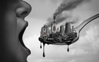 Xenoestrogenic Pollution in Our Daily Lives