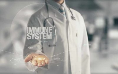 What Is The Immune System And How Can You Boost It?