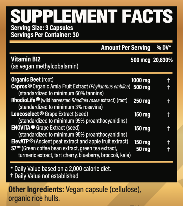 ACTION 2.0 Supplement Facts