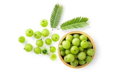 Amla: India's Glutathione-Boosting Superfood